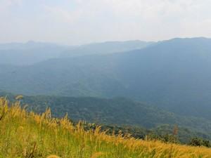 Mysore Horsley Hills Silky Drive Amidst The Hills
