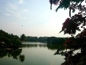 Top 5 Lakes Bengaluru Visit This Season