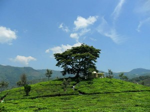 Backpack To These Offbeat Summer Destinations Around Mysore