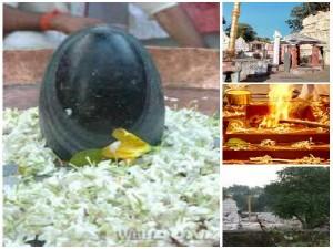 Kapotheshwara Temple In Gunturu