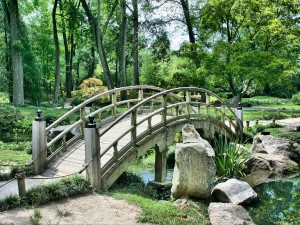 Visit The Beautiful Oxygen Park In Secunderabad