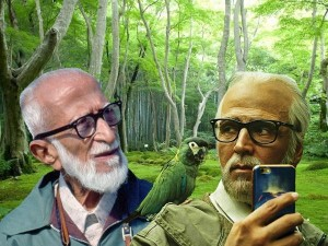 Salim Ali Bird Sanctuary 2 0 Movie