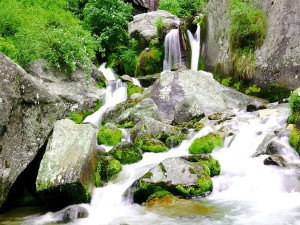 Jogini Waterfall Himachal Pradesh Attractions How Reach
