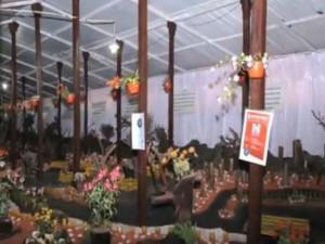 Thread Garden Ooty Tamilnadu Attractions Entry Fees