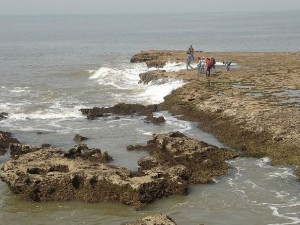 Nagoa Beach Diu Attractions And How To Reach