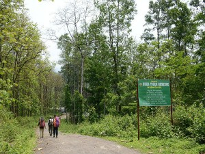 The Buxa Tiger Reserve Attractions And How To Reach
