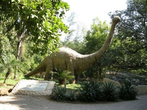 Dinosaur Museum Gujarat Attractions And How To Reach