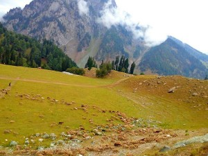 Kishtwar In Jammu And Kashmir Attractions And How To Reach