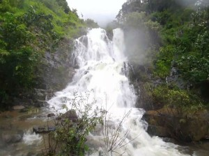 Bangara Kusuma Falls Gerusoppa Attractions And How To Re