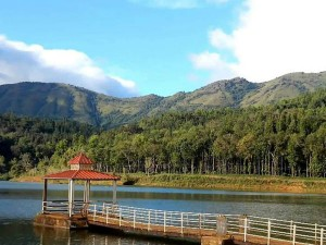 Hirekolale Lake Chikmagalur Attractions Timings And How To
