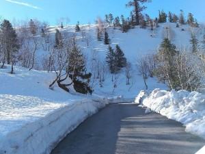 Gulaba In Manali Attractions And How To Reach