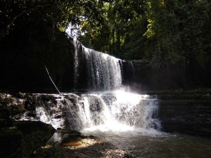 Thenzawl In Mizoram Attractions And How To Reach