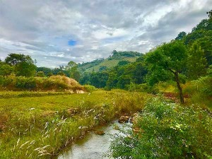 Offbeat Hill Stations In Andhra Pradesh