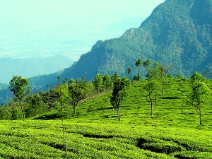 Best Places To Visit In South India In March