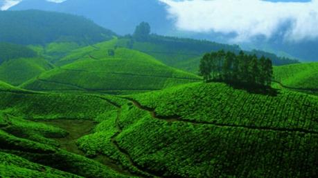 ಬೇಸಿಗೆಯಲ್ಲಿ ಭೇಟಿ ನೀಡಬಹುದಾದ ದಕ್ಷಿಣ ಭಾರತದ ಗಿರಿಧಾಮಗಳಿವು