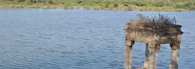 ವಲಸೆ ಪಕ್ಷಿಗಳಿಗೆ ಸ್ವರ್ಗ ಮೈಸೂರಿನ ಲಿಂಗಾಂಬುಧಿ ಸರೋವರ