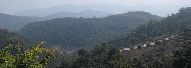 ಈ ಬೇಸಿಗೆಯಲ್ಲಿ ಭೇಟಿ ನೀಡಬಹುದಾದ ದಕ್ಷಿಣ ಭಾರತದ ತಂಪಾದ ತಾಣಗಳು