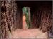 ಕಮಲ್ಘಡ್ ಕೋಟೆಗೆ ಟ್ರಕ್ಕಿಂಗ್ ಹೋದರಷ್ಟೇ ಅಲ್ಲಿನ ಸೌಂದರ್ಯ ಸೆರೆಹಿಡಿಯಲು ಸಾಧ್ಯ
